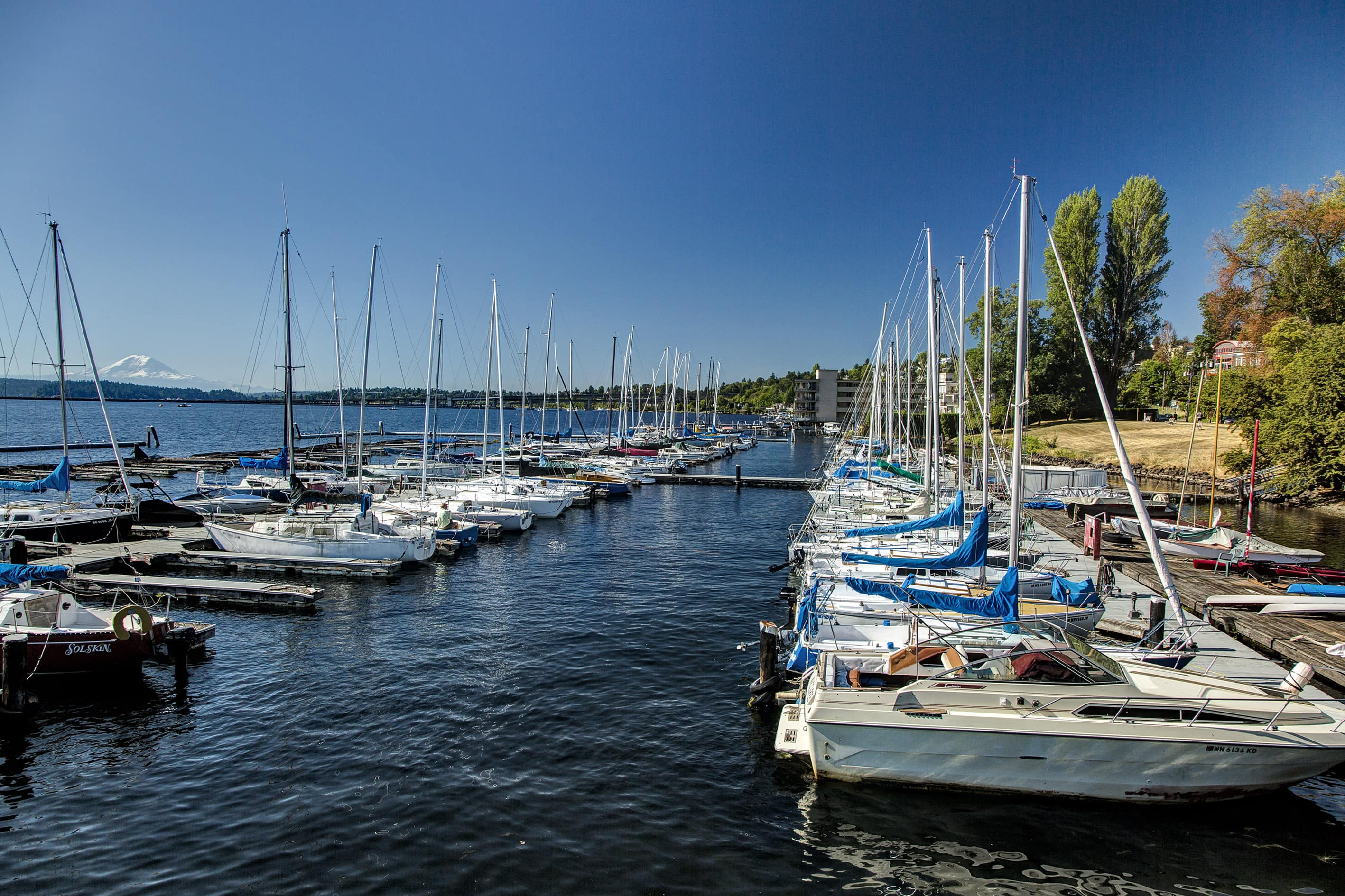 Seattle Is Surrounded By Water And In Summer The Lakes Puget Sound Are Bustling With Boaters Out Soaking Sun Spray