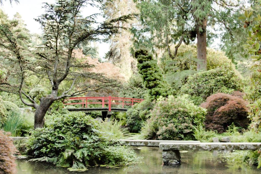 The Beauty and Serenity of Kubota Gardens