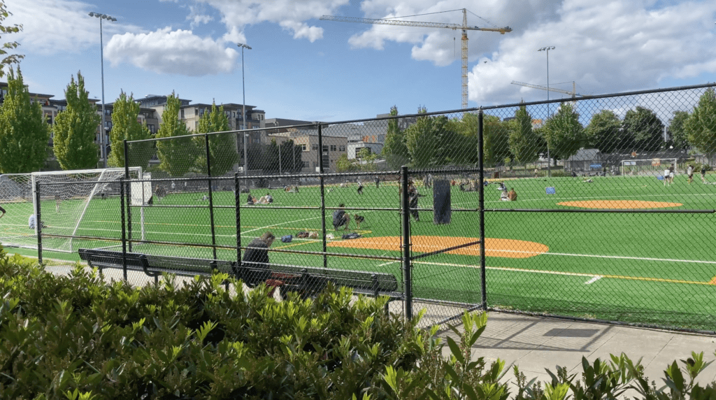 Bobby Morris Playfield at Cal Anderson Park