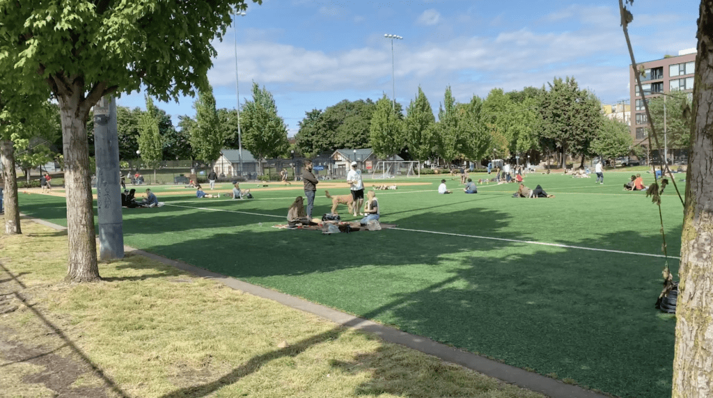 Bobby Morris Playfield at Cal Anderson Park on Capitol Hill